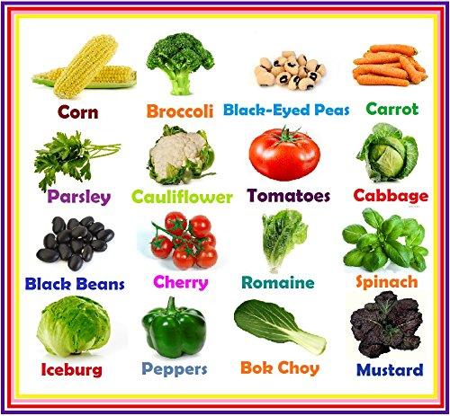Heirloom Vegetable Seeds- Non Gmo Seeds-non Hybrid- Easy To Grow