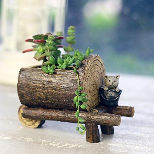 Sun-e Cute Succulent Plants Pot Micro Landschaft Personalized Office House Balcony Landscape Pot Creative Decorative