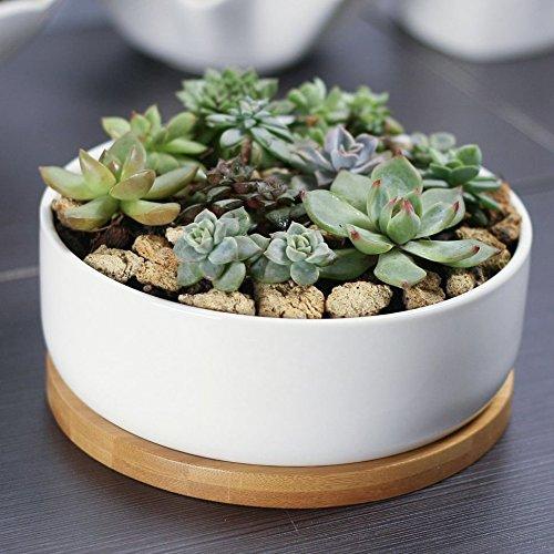 Mkono Small Ceramic Plant Pot White Succulent Planter -- Round