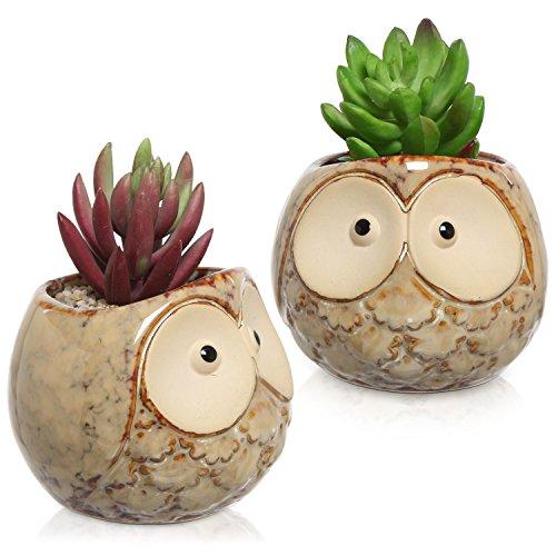 Set Of 2 Owl Design Mini Ceramic Plant Container Flower Pots Window Sill Succulent Planters Brown