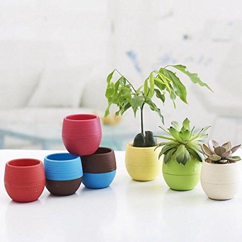 dipshop Colorful Flower Pot Succulents Flowerpot Home Office Decor  Red