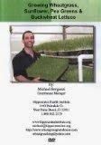 Growing Wheatgrass Sunflower Pea Greensamp Buckwheat Lettuce Dvd - By Michael Bergonzi