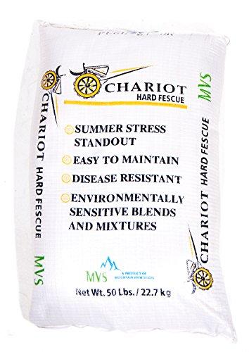 Oregon Certified Hard Fescue Grass Seed