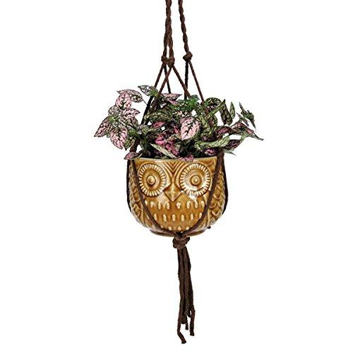 Natures Garden Hanging Owl Pot Golden Tan