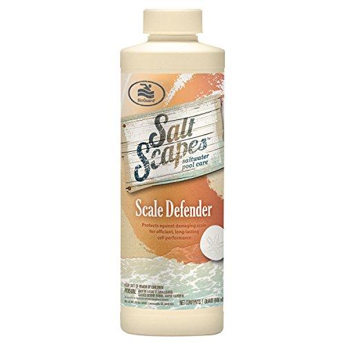SaltScapes Saltwater Pool Care - Scale Defender