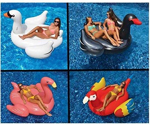 Swimline Swimming Pool Float Lounger Set WhiteBlack Swans  Flamingo  Parrot from-by_alicelittleshoponline it155172274550352