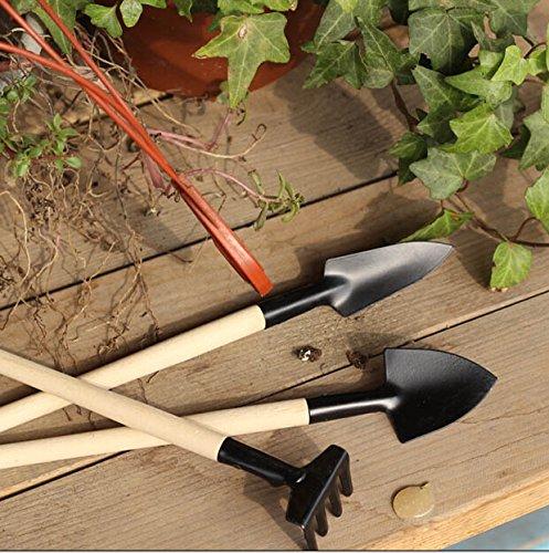 1set Mini Garden Tools Small Shovel Rake Spade Wood Handle
