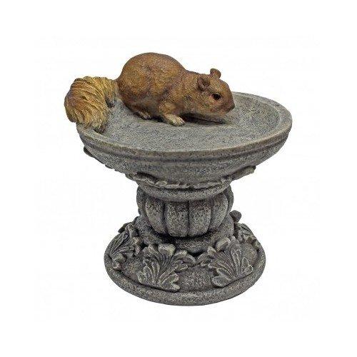 Squirrel in Birdbath Statue Garden Decor Home Garden Decor Yard Art