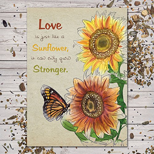 Set Of 25 Colorful Sunflower Wedding Favors  Seed Packets autumn Beauty Mixture  Helianthus Annuus