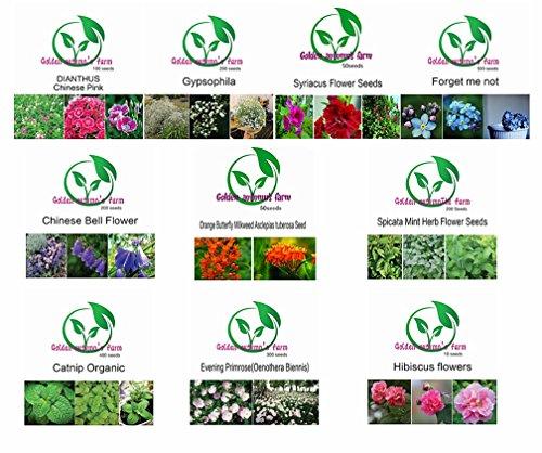 Golden autumn farm-Beautiful flowers seeds set -- 10 Easy-to-Grow Flower Seeds