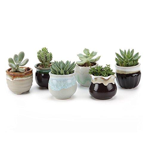 T4u 25 Inch Ceramic Flowing Glaze Black&ampwhite Base Serial Set Sucuulent Plant Potcactus Plant Pot Flower Pot