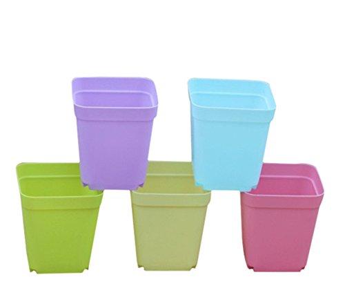 Hosaire 14pcs Colorful Mini Square Plastic Pots Small Succulent PotsNursery pots