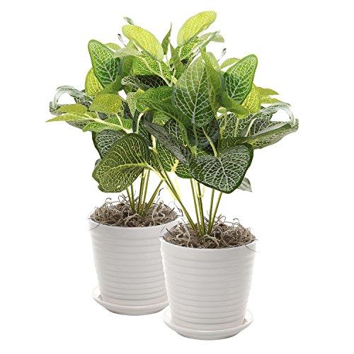 Set Of 2 White Ceramic Ribbed Design Round Succulent Plant Pots  Small Decorative Herb Planters