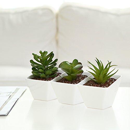 White Ceramic Angle Design Mini Succulent Planter Pots Small Plant Containers Set of 3