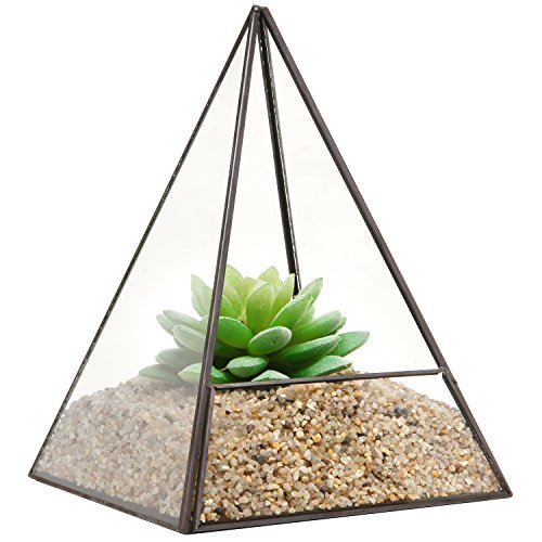 Modern Glass Pyramid Tabletop Succulent Plant Terrarium Box  Air Plant Cacti Holder Case - MyGiftÂ