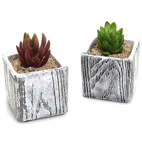 3 Inch Textured Cement Square Box Succulent Plant Pots  Natural Stone Design Cactus Planters - Set Of 2