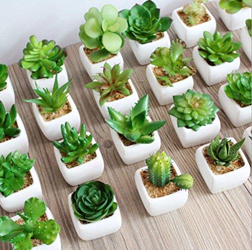 Dutch Brook Mini Potted Simulation Succulents Artificial Cactus Plants for Home Office Garden Decor Sent Randomly