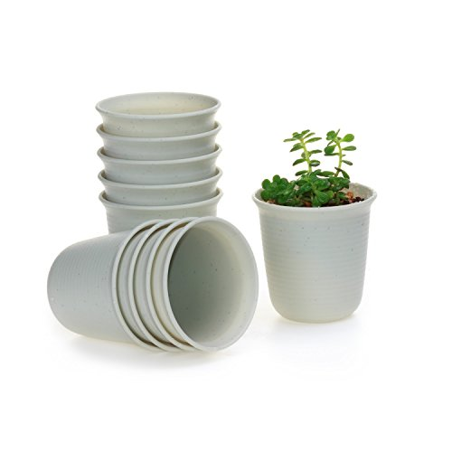 T4u 25 Inch Plastic Round Sucuulent Plant Potcactus Plant Pot Flower Potcontainerplanter Marble White Package