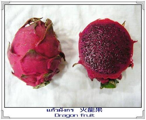 20 PURPLE DRAGON FRUIT Pitaya  Pitahaya  Strawberry Pear Hylocereus Undatus Cactus Seeds by Seedville