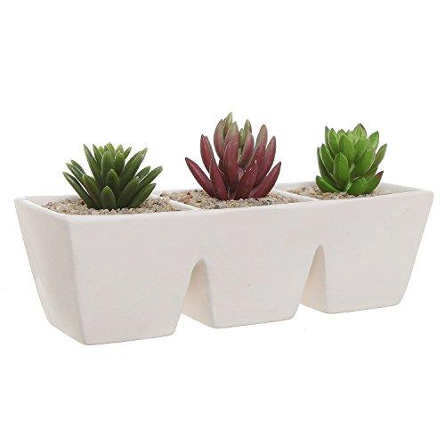 Off-white Unglazed Ceramic Rectangular 3 Section Succulent Plant Pot  Herb Garden Planter - Mygift&reg