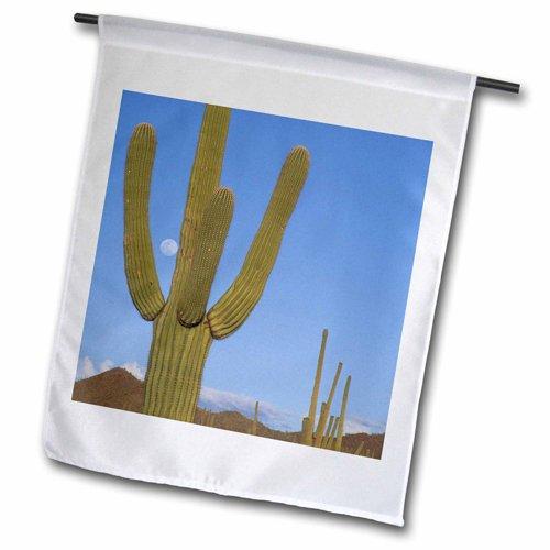 3drose Fl_87948_2 Giant Saguaro Cactus Succulent Arizona Us03 Jme0051 Garden Flag 18 By 27&quot