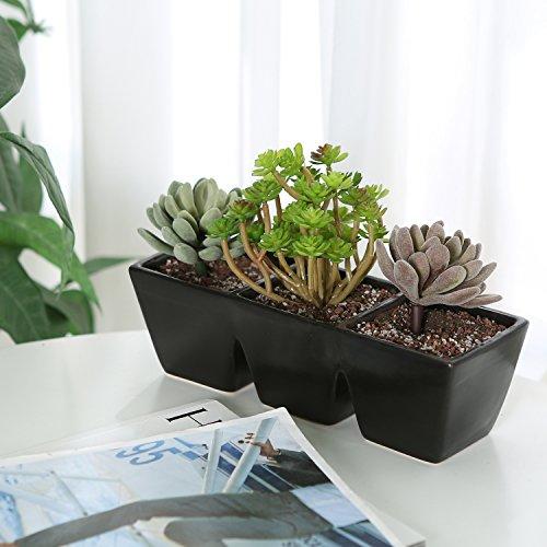 Modern Black Ceramic Rectangular 3 Section Succulent Plant Pot  Herb Garden Planter - MyGift