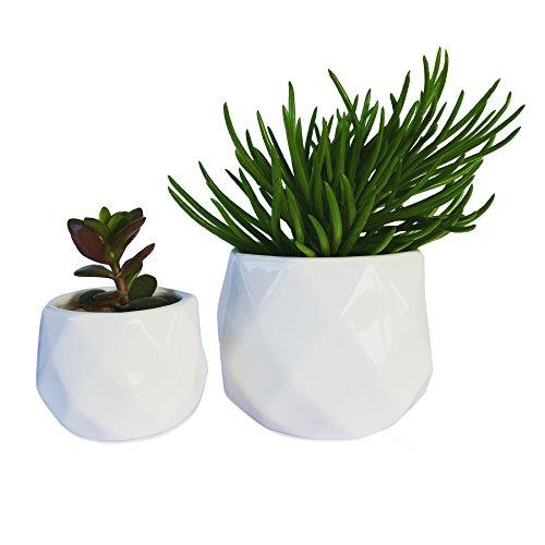Modern Succulent Planters - Set of Two Geometric Succulent Pots 2 White