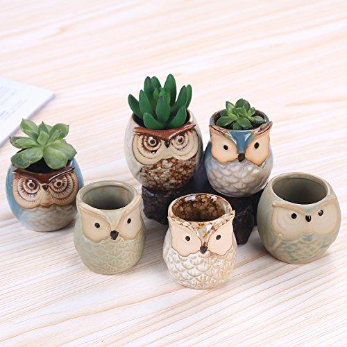 ROSE CREATE 6 Pcs 25 Inches Owl Pots Little Ceramic Succulent Bonsai Pots with a Hole - Pack of 6