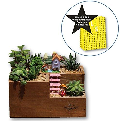 Lightningstore Wooden Flower Pot Succulent Plants Pot Microlandschaft Personalized Office House Balcony Landscape