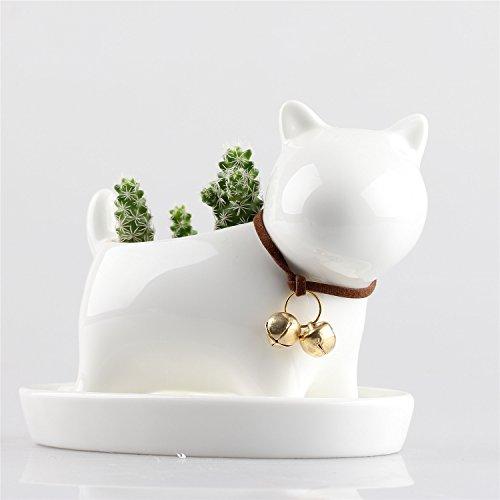 Little Dog White Ceramic Succulent Plant Flower Pot Flowerpot Planter Pots Milky Cream White With Tray Neck With