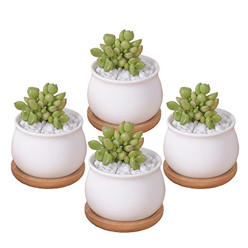 ROSE CREATE 4 Pcs 275 Inches White Mini Ceramic Succulent Plant Pots with Saucers Thumb Flower Pots with Hole - Pack of 4