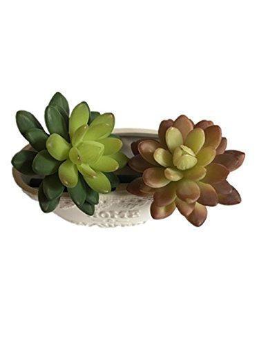 Lucky Six 10&quot Artificial Succulent Plantsset Of 2
