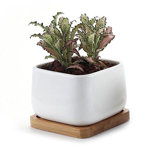 T4U 375 Inch Ceramic White Square NO2 succulent Plant PotCactus Plant Pot With Bamboo Tray