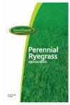 Perennial Ryegrass 25 - Prg25ace00 - Barenbrug Usa