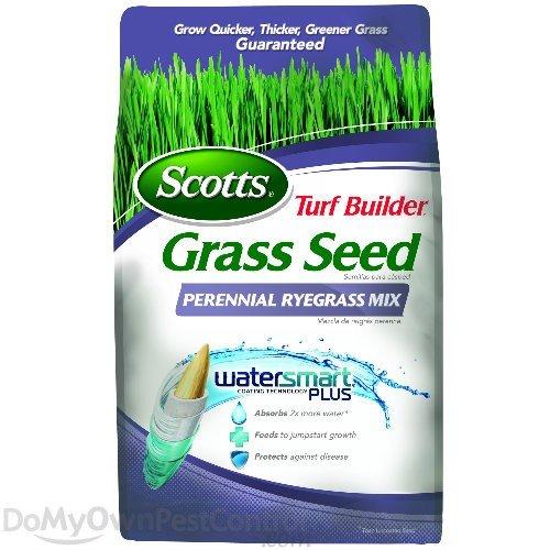 Scotts Turf Builder Grass Seed Perennial Ryegrass Mix 3 lbs