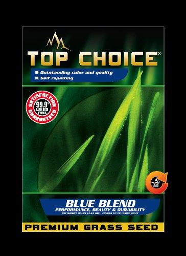 Top Choice 17643 Kentucky BluePerennial Ryegrass Grass Seed Mixture 10-Pound