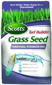 Turf Builder Perennial Ryegrass Mix