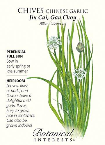 Chinese Garlic Chives Seeds - 1 gram - Perennial Herb