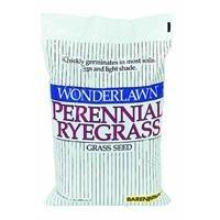 Barenbrug Usa 22205 Perennial Ryegrass Grass Seed