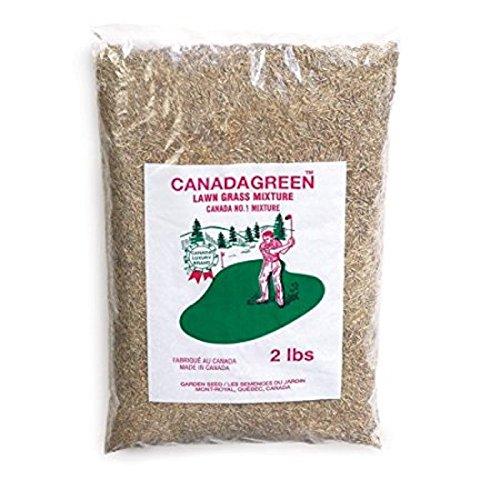 Canada Green Grass Lawn Seed-4 Lbs Bag