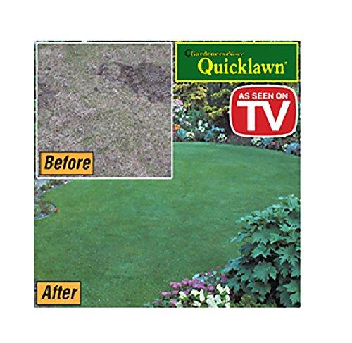 Gardeners Choice Quicklawn Lawn Seed- 1 Lb Bag