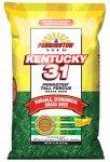 Pennington Seed 100505592 Kentucky31 Tall Fescue Grass Seed 5