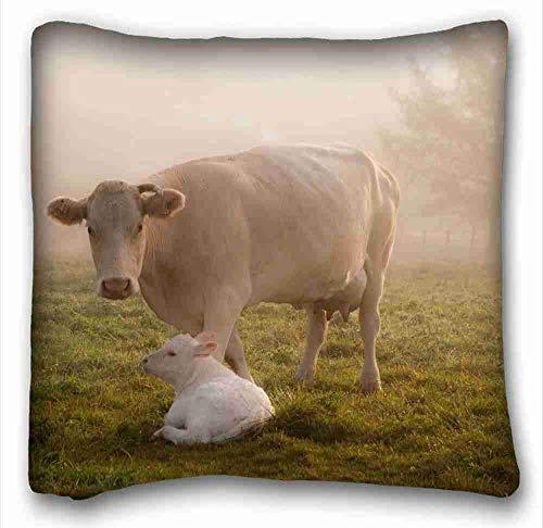 EGDE4 Decor Pillows Custom Animals Cow Calfs Grass Care Animals Zippered Body Pillow Case Cover Size 16X16