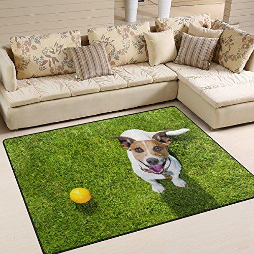 ALAZA Cute Pug Dog Ball on Green Grass Area Rug Rugs for Living Room Bedroom 53x4