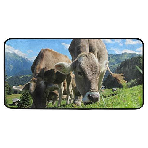 FANTAZIO Baby Cows Eat Grass Area Rug Carpet Non-Slip Floor Mat Doormats for Both Outdoor and Indoor 39 x 20 in