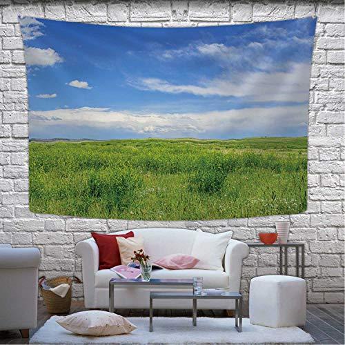 Hitecera Short Grass Prairie Tapestry Wall Hanging173957 Wall Art for Living Room Dorm Decor787W x 591H