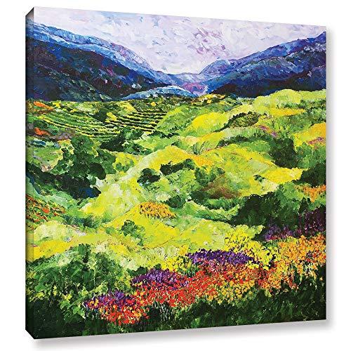 ArtWall Allan Friedlander Soft Grass Gallery-Wrapped Canvas 24x24