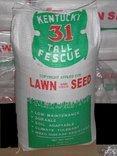 The Dirty Gardener Kentucky 31 Tall Fescue Lawn Grass - 50 Pounds