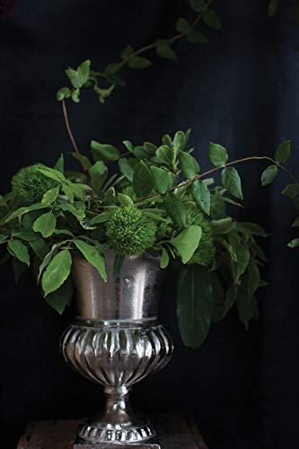Richland Caesar Silver 1125 Classic Style Flower Urn