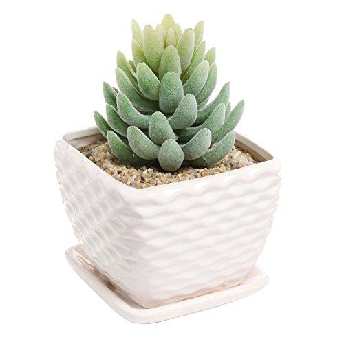 Contemporary White Ceramic Succulent Planter Flower Pot W Decorative Wavy Coil Designamp Drainage Plate